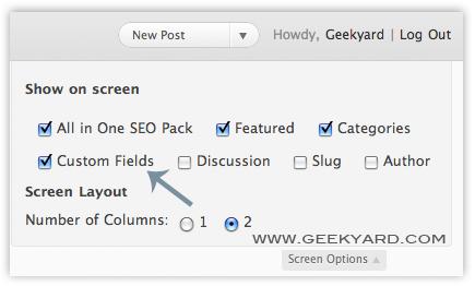 Custom Fields in WordPress