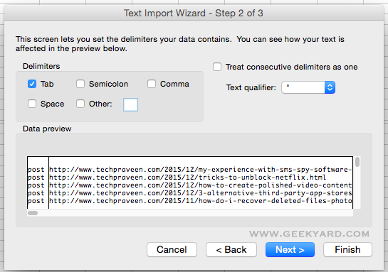 Excel Text Import Wizard Step 2