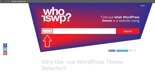 Enter URL in WordPress Theme Detector