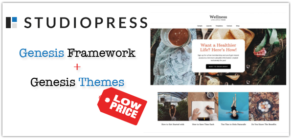 Genesis Framework Themes Low Price
