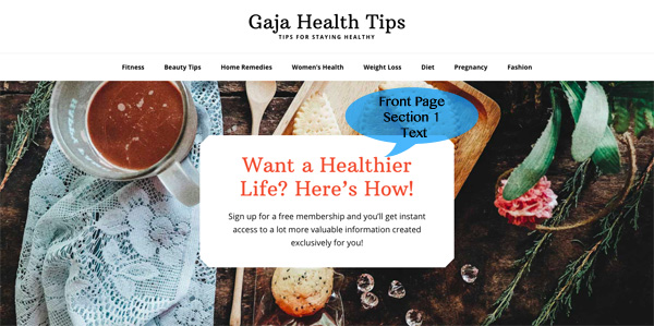 Wellness Pro Homepage